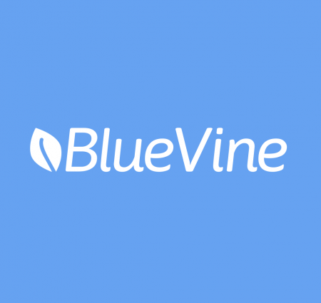 BlueVine Expands Reach With Up to $130 million in New Debt Financing