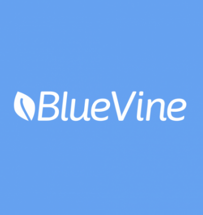BlueVine, Veem Team Up On Small Business Cross-Border Payments