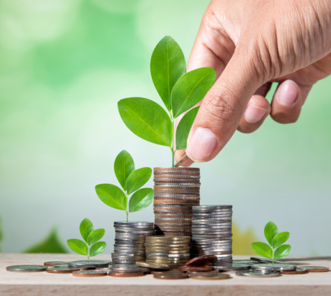 survival or growth loan for your small business
